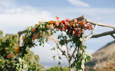Tips on how to have a sustainable wedding
